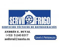 ???Reparacion de Refrigeradores. SERVIFRIGO - 52408317