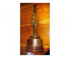 Vendo trofeo Premio de Celia Cruz 53813173-53028719