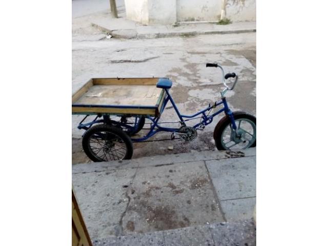 !Triciclo!